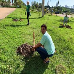 OAB-MT faz plantio no entorno da Arena em evento do Cuiabá, 300 sombrinhas